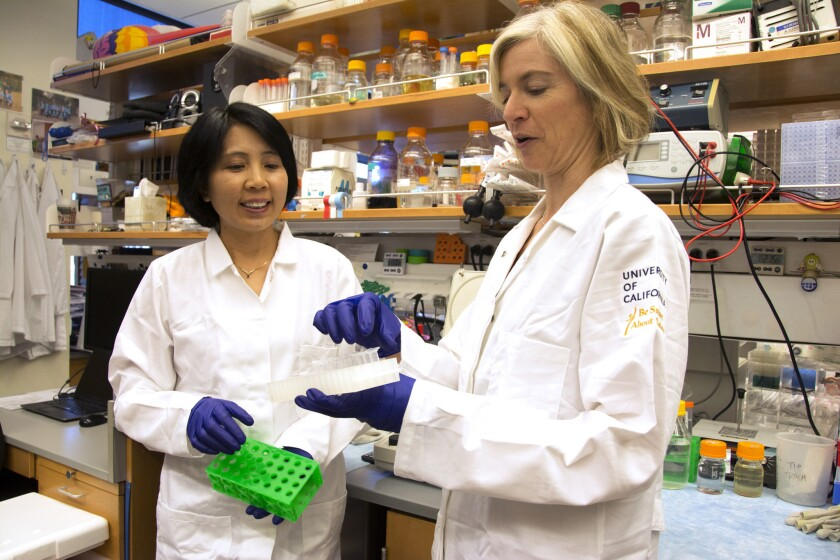 Gene editing tech CRISPR co-inventor Jennifer Doudna, right, and lab manager Kai Hong at Doudna's UC Berkeley lab.