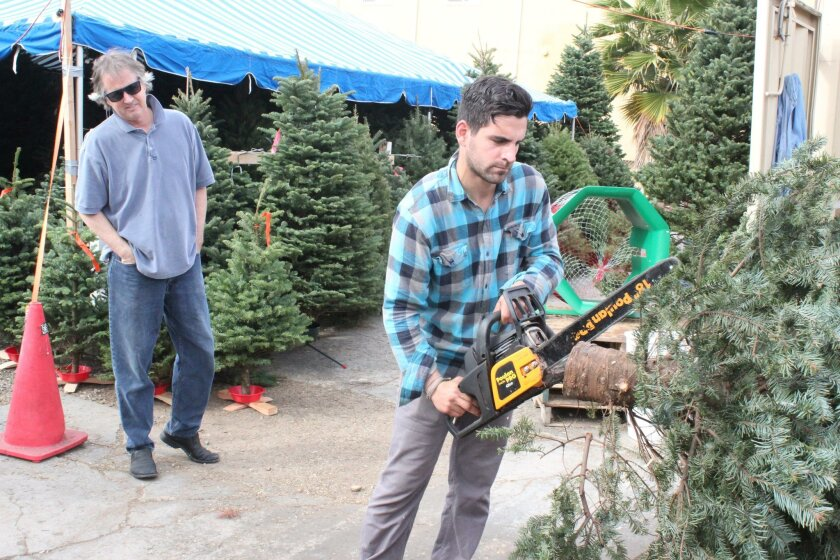 La Jolla resident Chris Dailey watches as Mr. Jingle's employee Austin Dowd trims the trunk and lower branches of the 8-foot Noble fir Dailey bought Dec. 4 at the La Jolla Mr. Jingle's Christmas Trees location.
