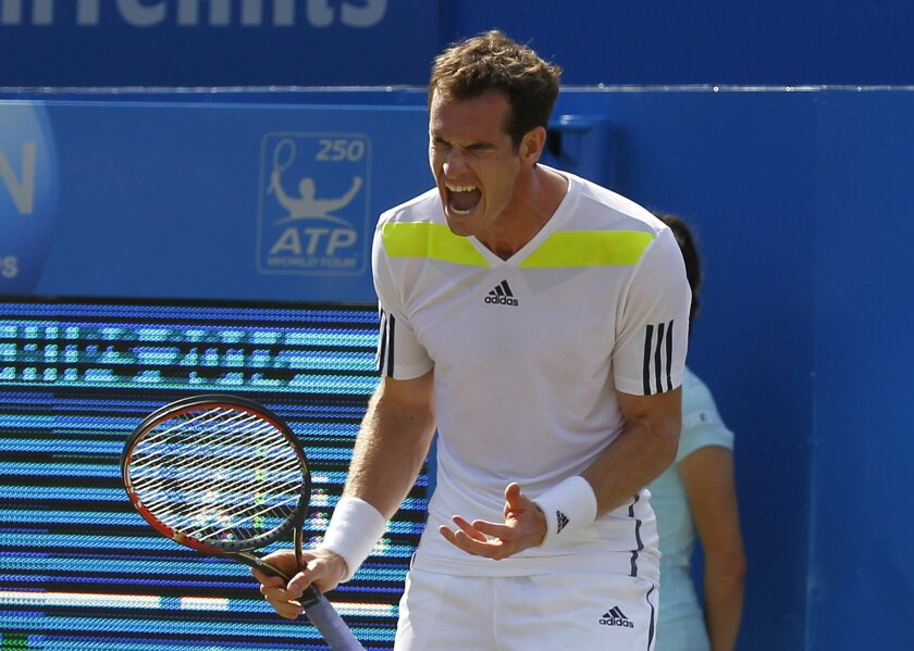 Andy Murray of Britain cries out after a point lost to Radek Stepanek of Czech Republic during their Queen's Club grass court championships 3rd round tennis match in London, Thursday, June 12, 2014. (AP Photo/Sang Tan)