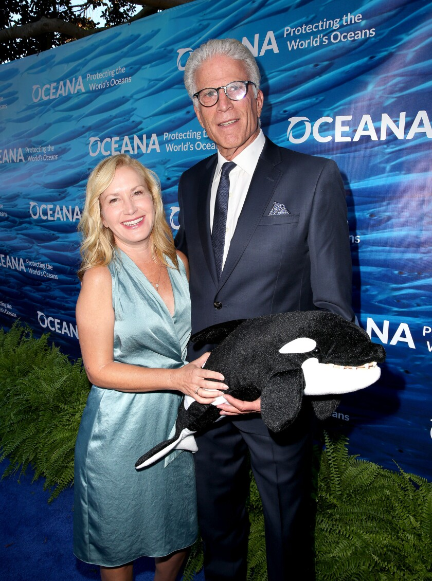 **Photo Credit: MOVI Inc.**  Date: September 7th 2019