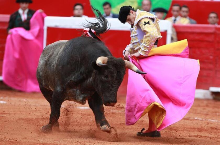 El novillero mexicano Sebastián Ibelles. EFE/Archivo