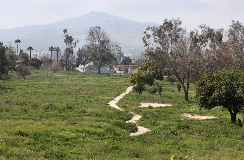 Weeds cover this section of the former Escondido Country Club in this view looking west from La Brea Street. In the distance is Double Peak in the San Elijo Hills area - 2016 file photo.