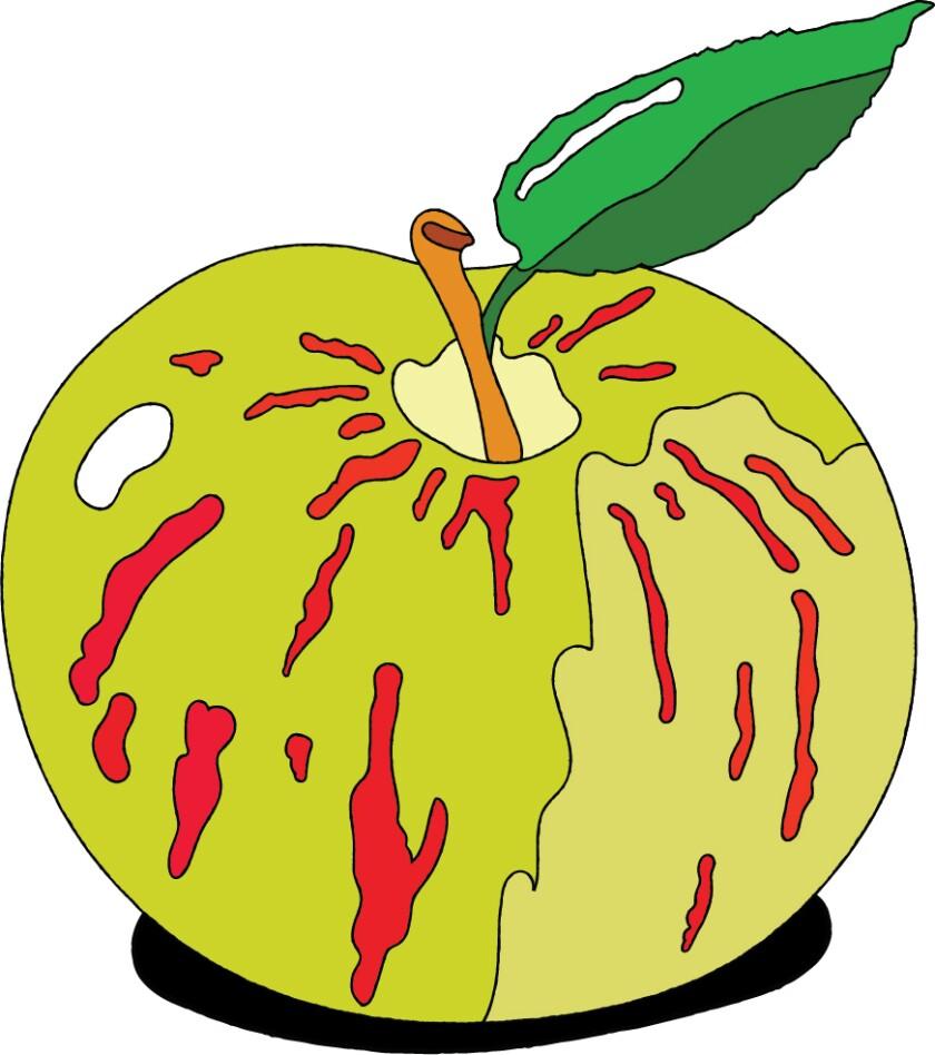 An illustration of an apple