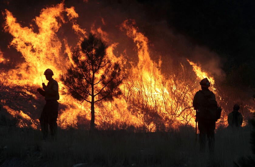 Firefighters start a back burn while battling the Elk Complex fire near Pine, Idaho.