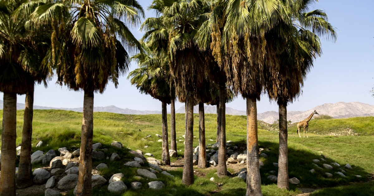 We planned these seven SoCal day trips with coronavirus in mind