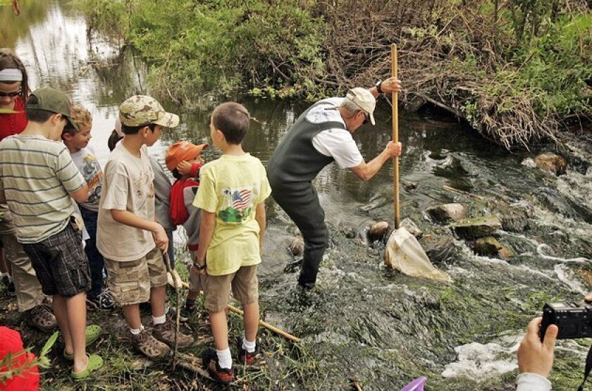 Gary Strawn, a volunteer with the San Diego River Park Foundation, gathered insects and other creatures from the San Diego River in Mission Valley yesterday as young participants looked on. (Laura Embry / Union-Tribune)