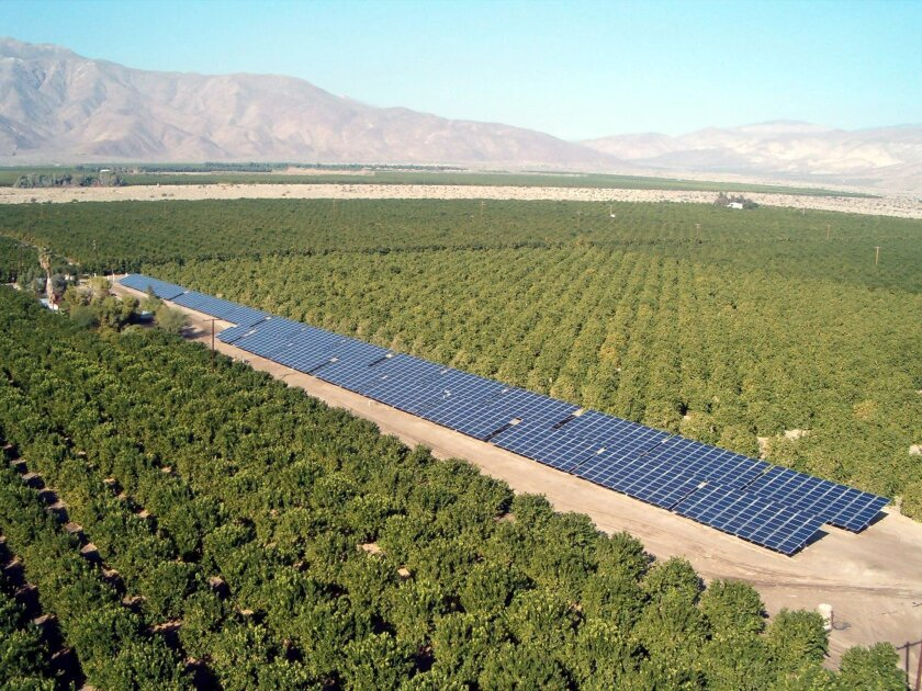 Citrus farms blanket the northern Borrego Valley