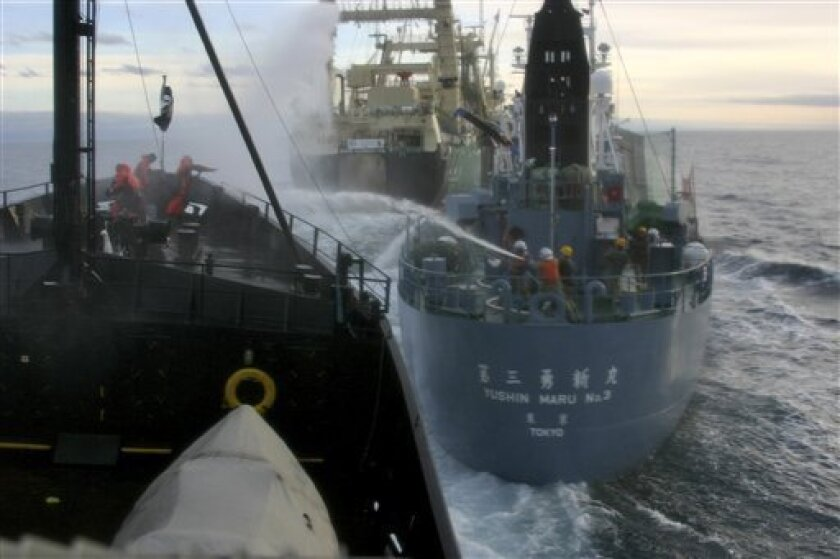 FILE - In this Friday, Feb. 6, 2009 file photo released by Sea Shepherd Conservation Society, Sea Shepherd crew aboard the M/Y Steve Irwin, foreground, throw bottles of rotten butter at Japanese harpoon whaling vessel, Yushin Maru No. 3 while whaling crew fire back with water cannons in Ross Sea off Antarctica. Australia's Prime Minister Kevin Rudd threatened legal action against Japan on Friday, Dec. 11, 2009, if it does not stop its research program that kills up to 1,000 whales a year. (AP Photo/Sea Shepherd Conservation Society, Stephen Roest, File)