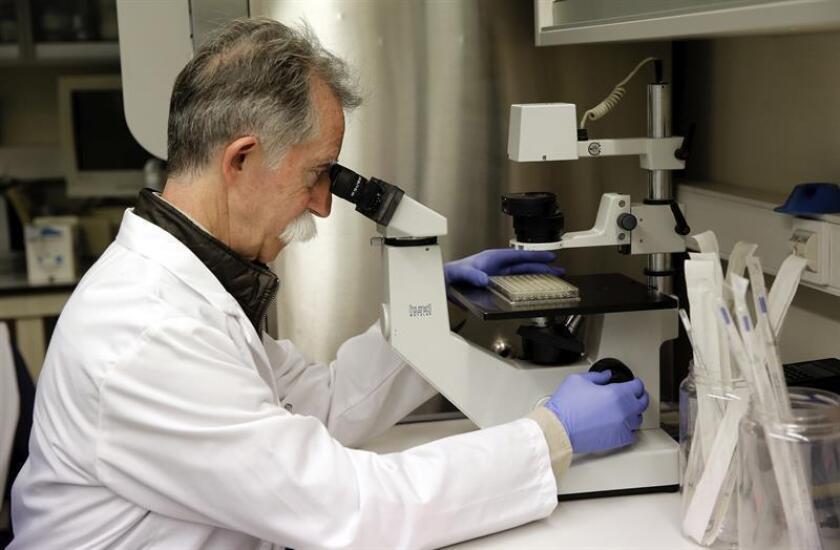 La resistencia antimicrobiana causa anualmente 700.000 muertes en el mundo y, de no tomar acciones para combatirla, se estima que en 2050 cobrará la vida de 10 millones de personas al año, dijo a Efe el doctor Adrián Camacho. EFE/ARCHIVO