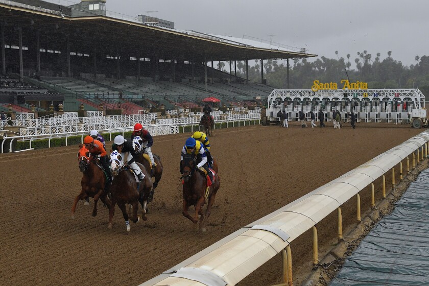 APTOPIX Virus Outbreak Horse Racing