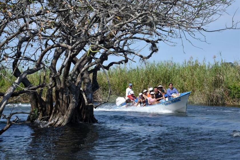 Vista general de los manglares en el estado de Nayarit (México), el 16 de febrero de 2018. Los arbustos leñosos y entrelazados que forman una cueva natural son la puerta de entrada del manglar La Tovara, en el occidente de México y uno de los ecosistemas del Pacífico mexicano con las mayores poblaciones de fauna silvestre. EFE