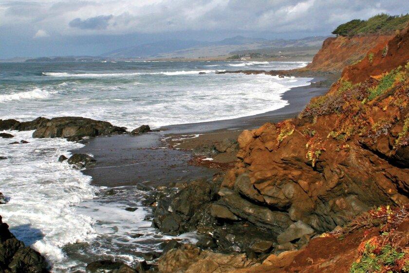 The wind-swept central coast near Cambria.
