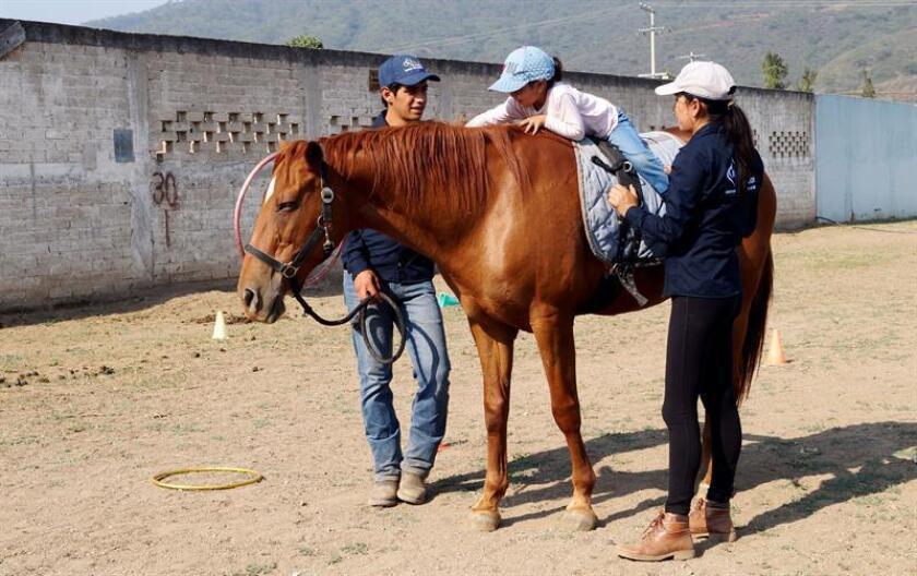 Fotografía cedida hoy, lunes 4 de junio de 2018, que muestra las terapias ecuestres del centro de equinoterapia Equuz, en el estado de jalisco (México). El vínculo afectivo y físico entre caballos y seres humanos ha permitido, a través de la historia, el desarrollo de terapias ecuestres para el tratamiento de patologías físicas y mentales en compañía de profesionales de la salud. EFE
