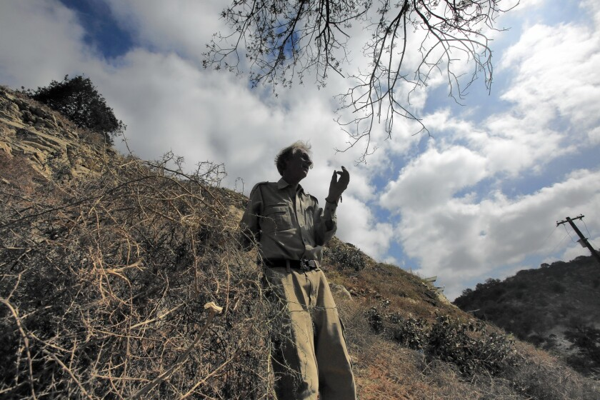 Arnold Newman, a botanist and president of the Oak Forest Canyon Homeowners Assn. in Sherman Oaks, says the canyon has up to 10,000 tumbleweed plants, which pose a fire hazard.