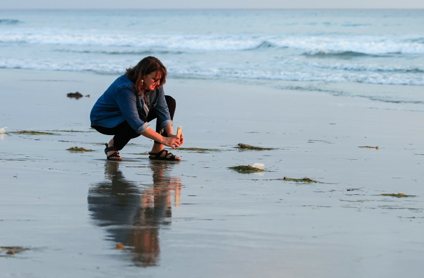 Biofilters Washing up in Carlsbad
