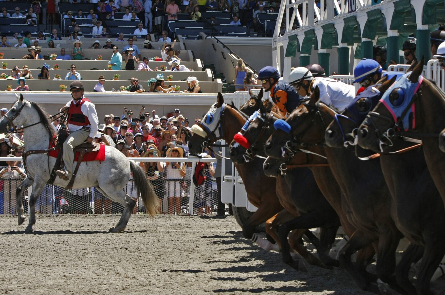 Horses break from the gate for the first race of the 2014 season at the Del Mar racetrack.