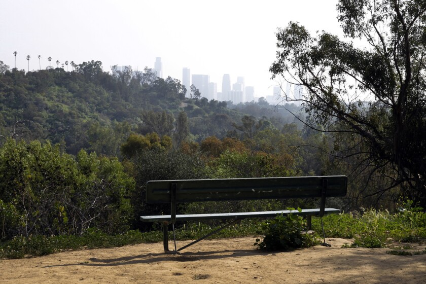 Could benches in Los Angeles, like this one in Elysian Park, become tributes to books?