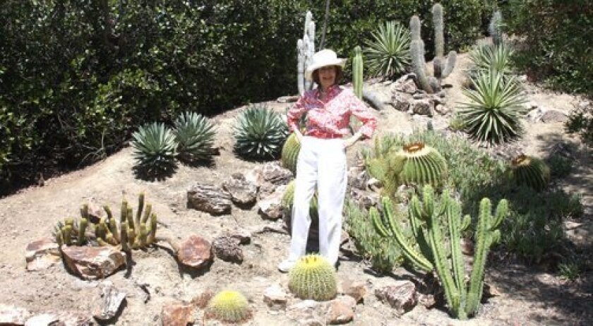 Shirley Berry standing with her various planted succulents.