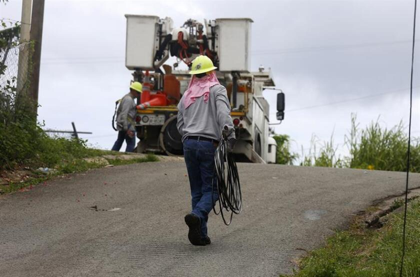 Fotografía fechada que muestra a un empleado de Energía Eléctrica de Puerto Rico mientras trata de reparar algunos cables destruidos tras el paso del huracán María, en el municipio de Naguabo (Puerto Rico). EFE/Archivo
