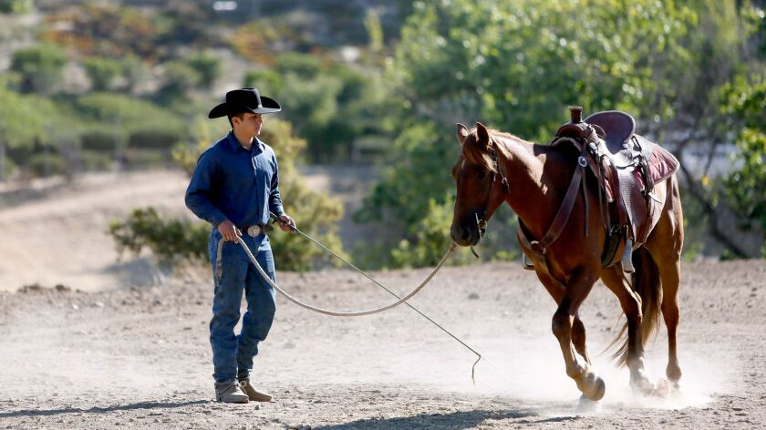 Burbank resident Roberto Flores, 20, goes through warm-ups with Lucky Little Sparrow, a 6-year-old mustang, during a morning routine in Sunland on Tuesday, June 13, 2017.