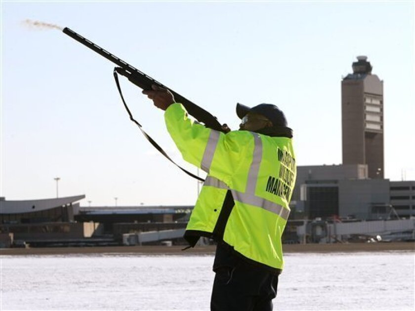Ulysses Dublin, one of four full-time Massport wildlife technicians, fires a non-lethal pyrotechnic round from a standard shotgun to disperse birds from the runways and surrounding areas at Logan International Airport in Boston, Mass., Friday afternoon, Jan. 16, 2009. Birds, which may have brought