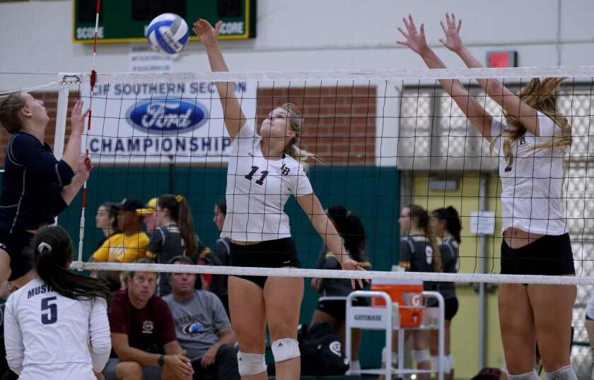 tn-dpt-sp-hb-dave-mohs-volleyball-20190907-8