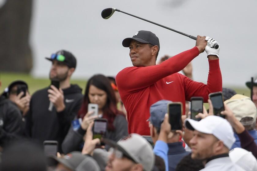 On The Fringe Tiger Golf