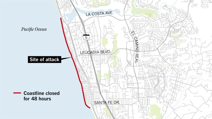 Teen diving for lobster attacked by shark in Encinitas on