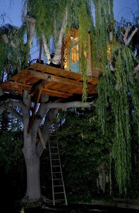 Mike Caveney fashioned his own willow-top treehouse piece by piece in his Pasadena garage. New Treehouses of the World: A book preview in photos For a peek inside more Southern California homes, go to our Homes of The Times gallery.
