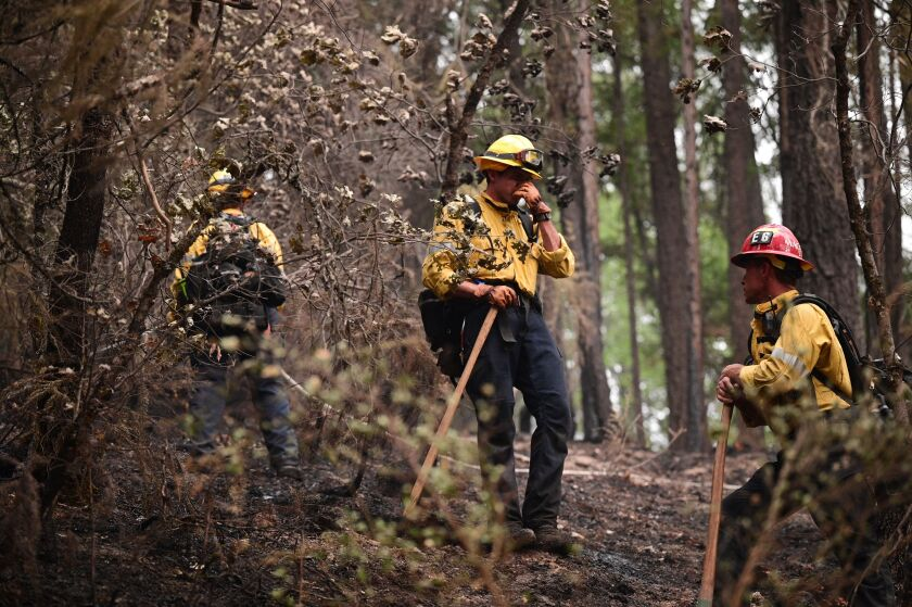 Firefighter crews stand in a burned forest