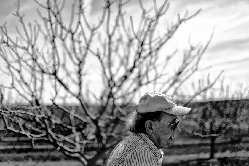 Fred Lujan, 68, was dreaming of a retirement tending his pistachio trees. Then the drought left him with no water to irrigate his orchard.