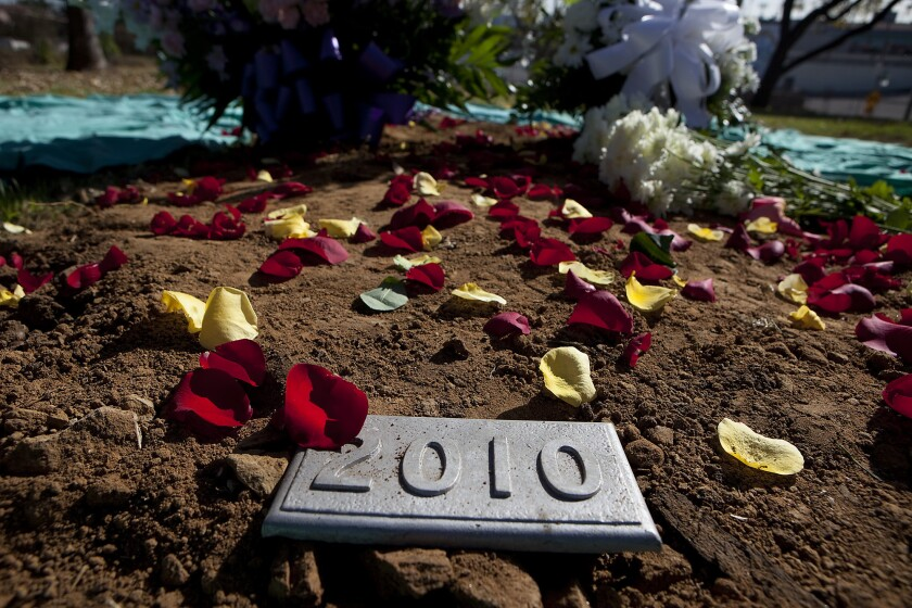 Rose petals cover the final resting area for the remains of 1,464 individuals during a burial at Evergreen Memorial Park.