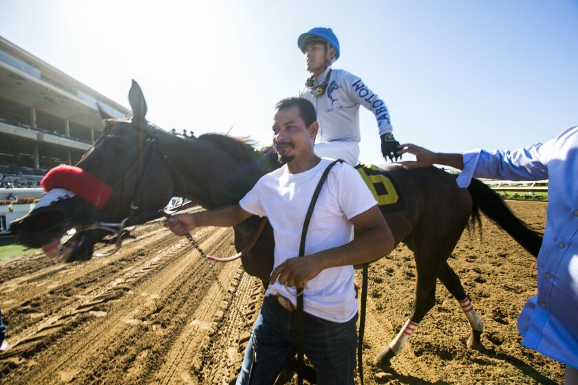 Groom Raul Aguilar leads jockey Abel Cedillo and horse Two Thirty Five to the winner's circle after they won the Harry F. Brubaker Stakes at Del Mar on Wednesday.