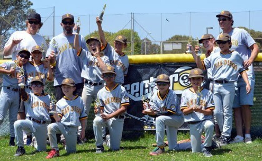 La Jolla Youth Baseball's Mustang-division champion is Sector 9. The team's manager is Dave Klimkiewicz. Steve Silva / Michele Friszell Photography