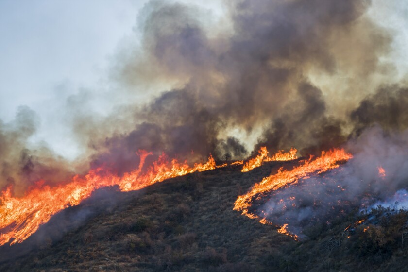 wildfire burning on a hillside