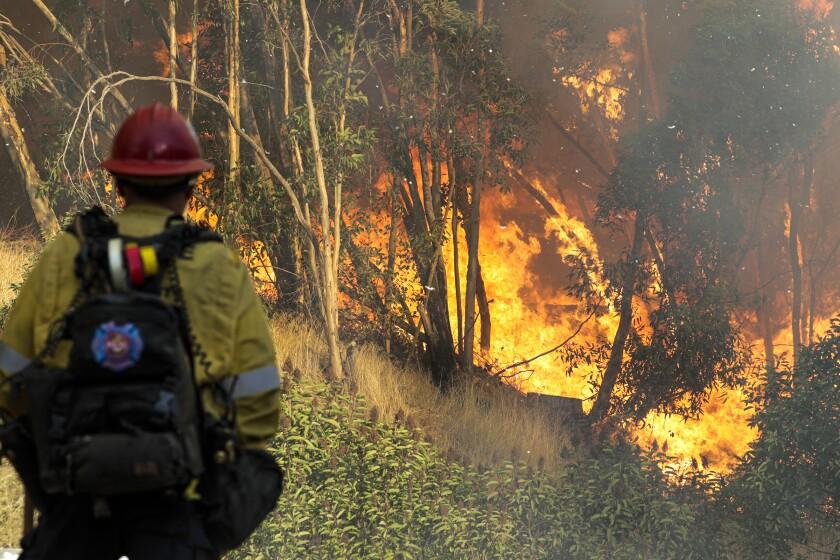 The Saddleridge fire near Olive View Medical Center.