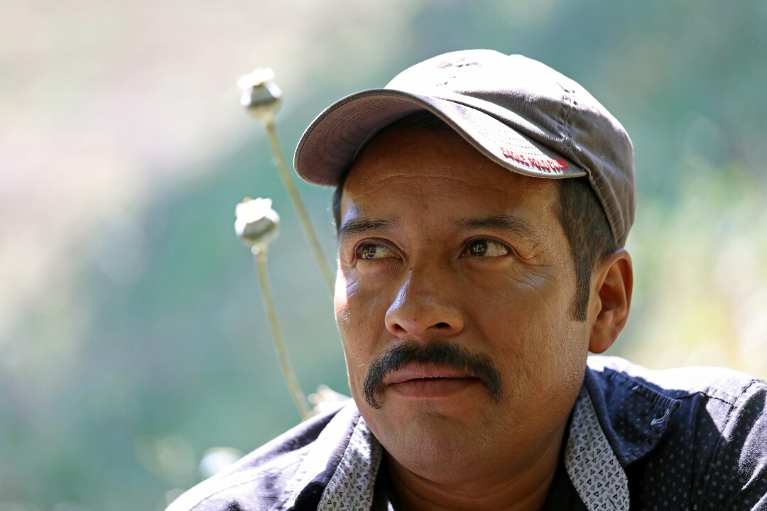 Pacheco, a father of five children, four of whom are in the U.S., can no longer make a living farming poppy plants. Demand dropped due to synthetics.