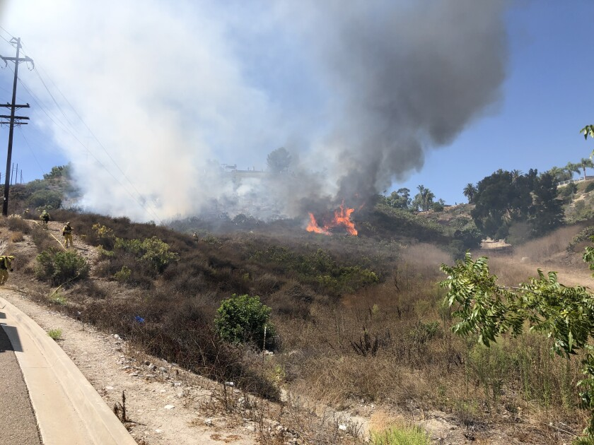 A small vegetation fire broke out Tuesday afternoon on a hill below homes in the Fletcher Hills area.