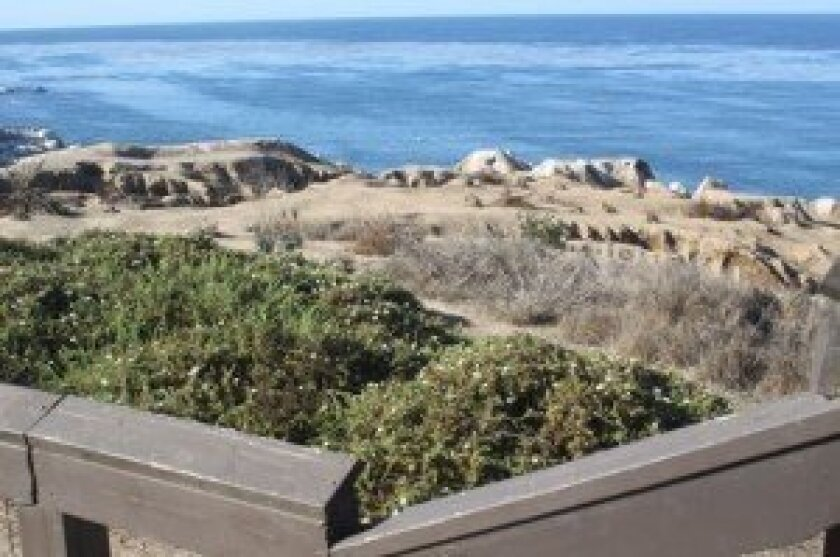 The cliffs at Goldfish Point would be re-vegetated and paths defined under a plan by Jim Neri.