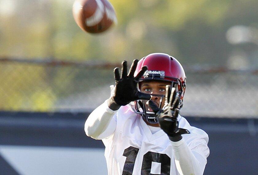 SDSU football receiver Brice Butler.