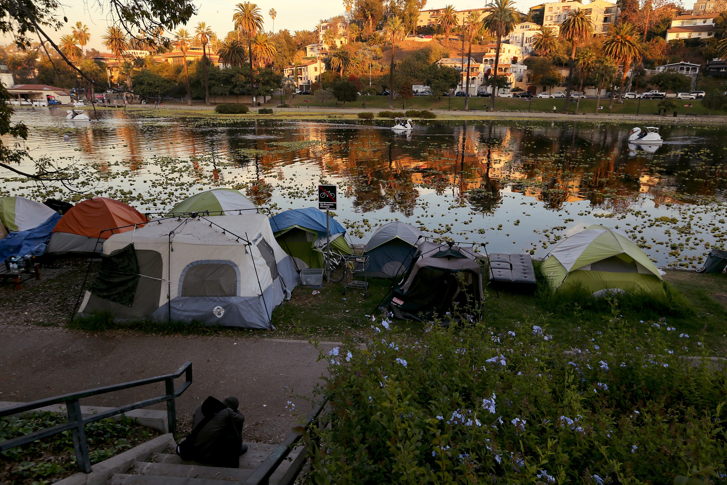 A homeless encampment sits in shadow on the banks of a lake, with houses illuminated by sunlight in the distance.