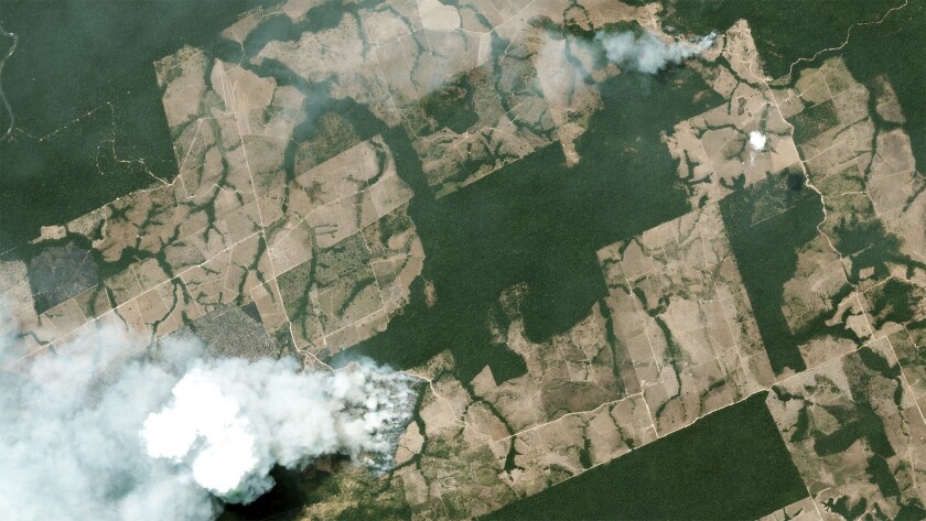 Aerial view of smoke billowing from a fire in the Amazon