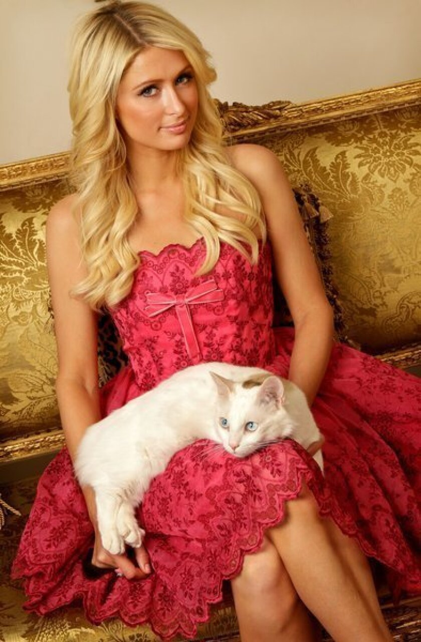 Paris Hilton sparks outrage with new store in Saudi Arabia