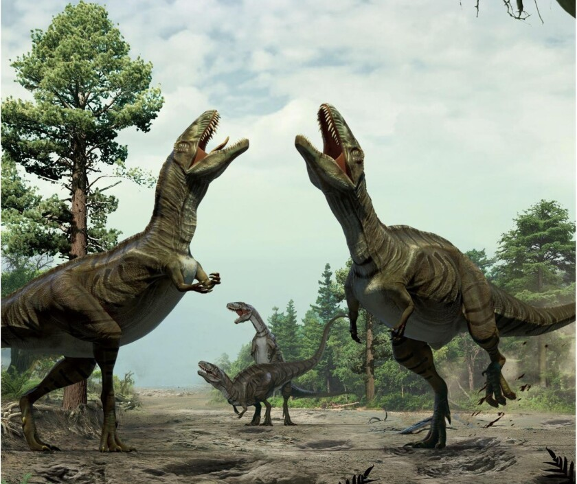 This artistic representation shows two theropod dinosaurs engaged in sexual display in an effort to attract mates.
