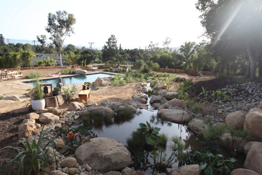 "The ""regeneration zone"" of a natural swimming pool in Ojai is styled to look like a natural pond and stream. It will be featured on Animal Planet's upcoming series ""The Pool Master."""