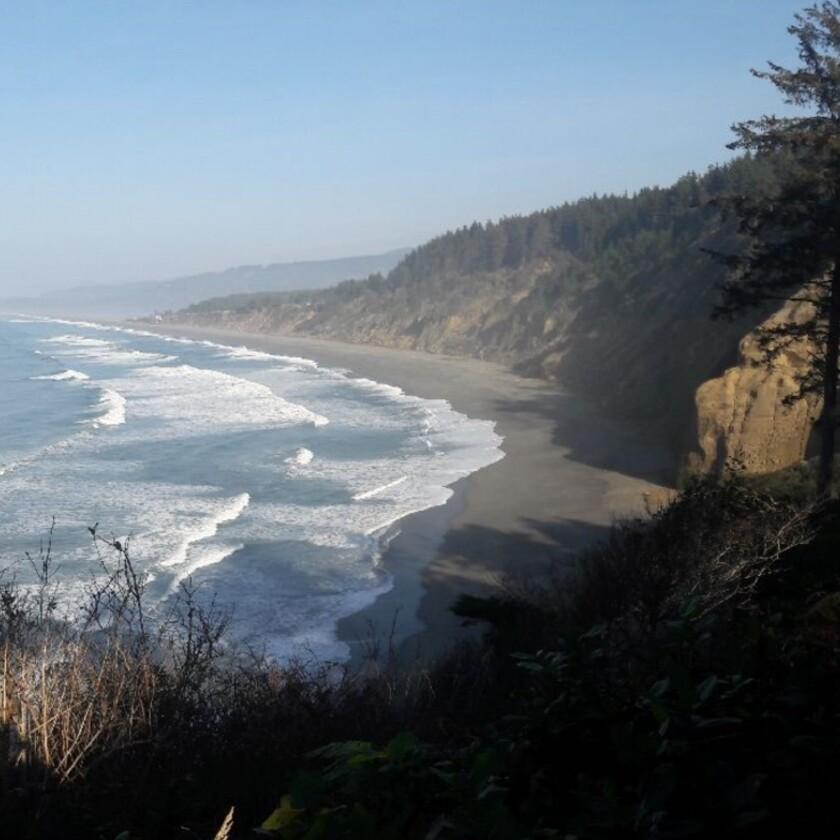 Rugged California coast line and beach.