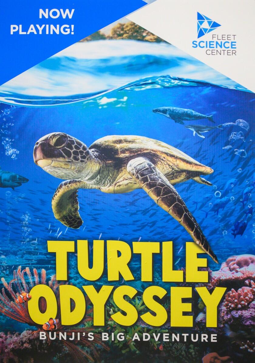 """Turtle Odyssey"" movie poster"