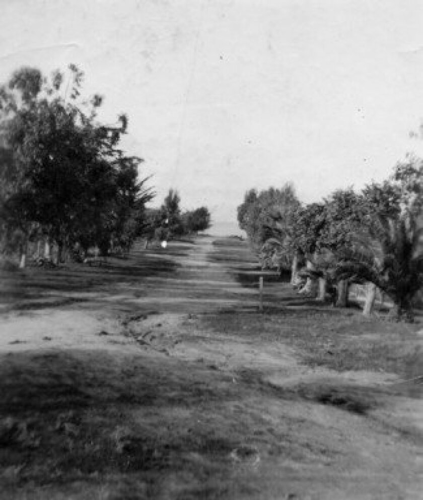 A view up Ivanhoe Avenue toward the Pacific Ocean circa 1900, as seen from Silverado Street.  La Jolla Historical Society