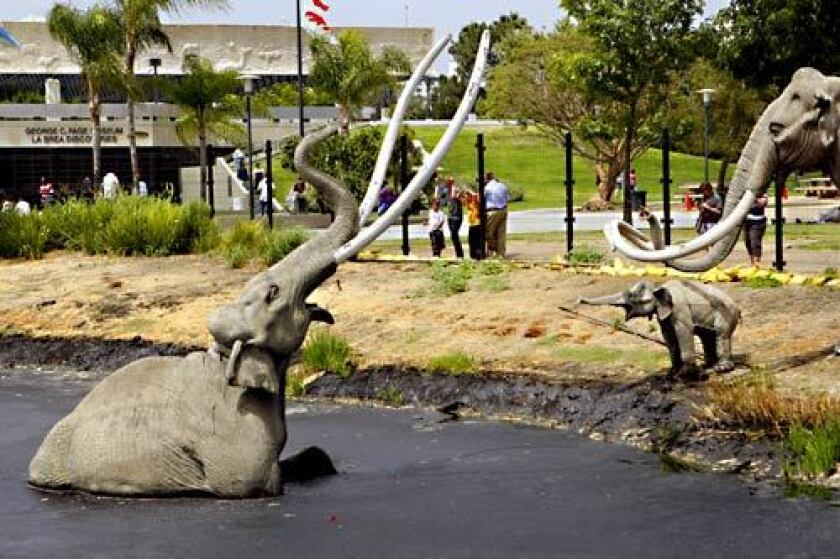 The La Brea Tar Pits mammoth