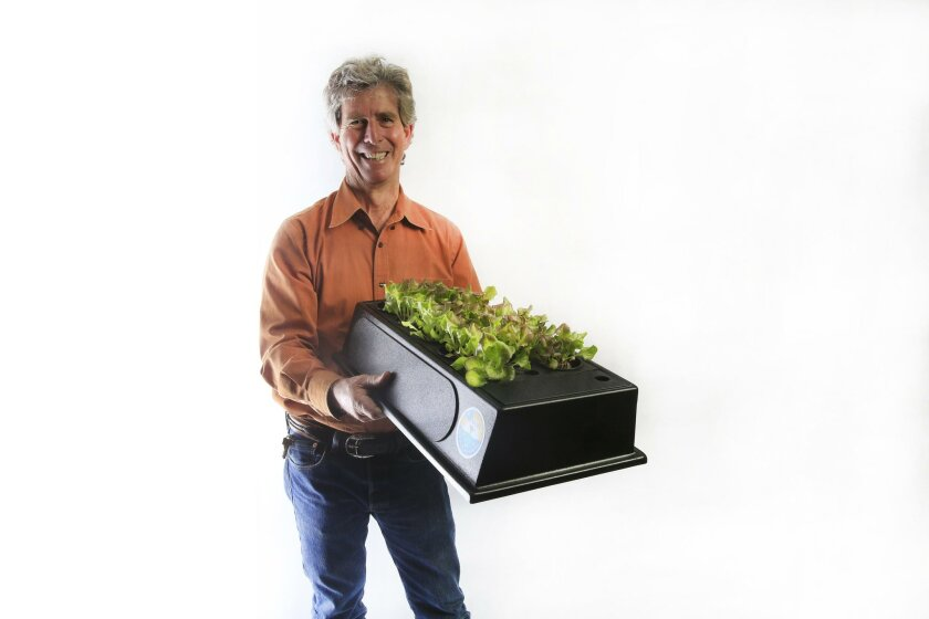 OCEANSIDE, CA, USA -- FEBRUARY 2, 2016:     Bill Toone, former zoo curator, condor expert and founder of Ecolife environmental group holds his consumer model of Eco-Cycle Aquaponics with lettuce growing.   Mandatory Credit: PHOTO BY NELVIN C. CEPEDA, SAN DIEGO UNION-TRIBUNE